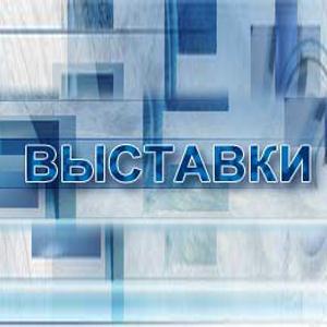 Выставки Верхнеуральска